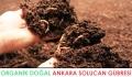 Çubuk Solucan Gübresi | Organik Doğal Solucan Gübresi